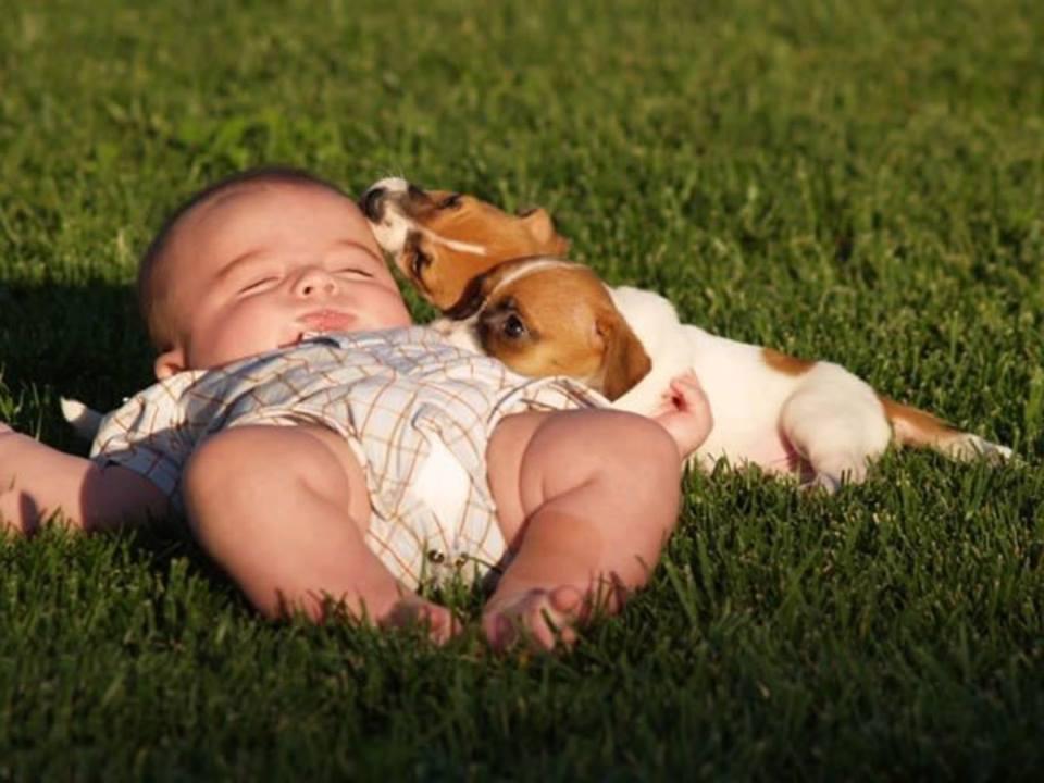 Giúp bé tránh còi xương với cách tắm nắng đúng.